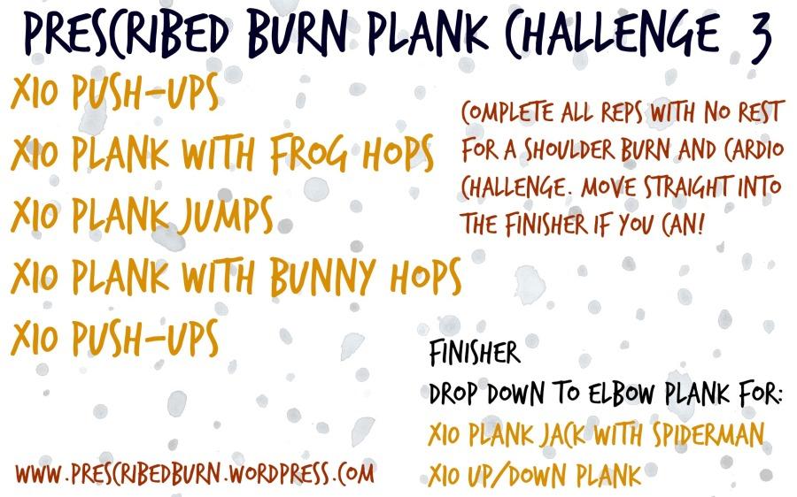 Plank Challenge 3