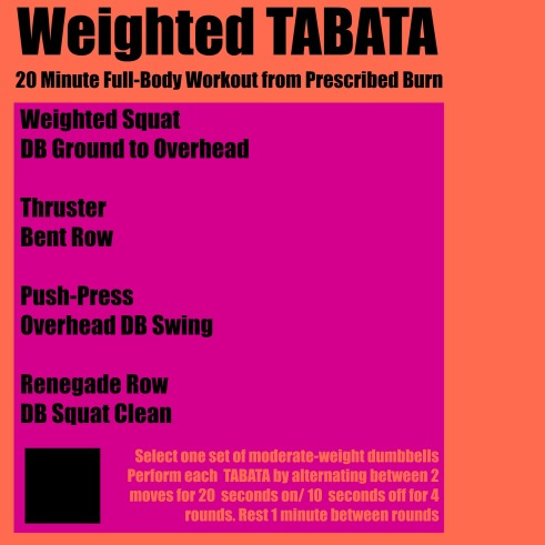20 Minute Weighted TABATA